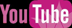 YouTube logo klein